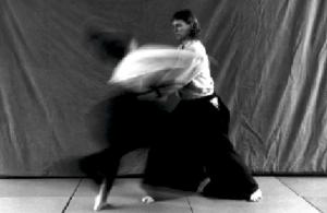 Aikido Bewegung