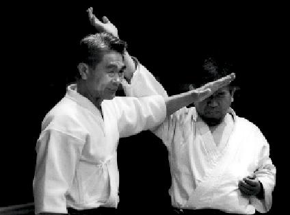 Shoji Nishio. Aikido Atemi Waza. Foto: Magnus Hartman.