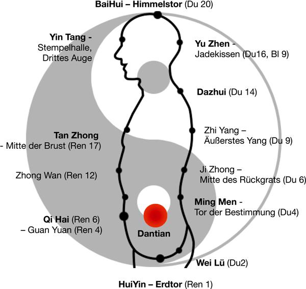 Es werden die wichtigsten Akupunkturpunkte und Energiezentren des Kleinen Himmlischen Kreislaufs dargestellt. Diese liegen entlang der Dumai und Renmai Gefäße.
